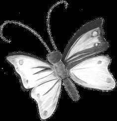 Pin Dibujos Mariposas Lapiz Todo Para Facebook Imagenes Kamistad ...