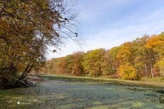 Autumn colors on Lake Shakamak at Shakamak State Park in Indiana captured by Wandering Ways Photography 2016