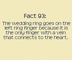 """""""Fact 93"""" <3"""