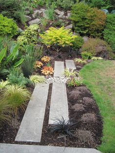 Mini rain garden captures run-off contemporary landscape by Banyon Tree Design Studio Rain Garden Design, Design Patio, Garden Landscape Design, Path Design, Bed Design, Landscape Pavers, Exterior Design, Garden Ideas Nz, Garden Projects