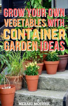 Want a vegetable garden but don't have the space? Try out these genius container garden ideas! #vegetablegarden #containergarden #gardening Diy Crafts For Teen Girls, Diy Crafts For Adults, Garden Projects, Garden Ideas, Diy Projects, Gardening For Beginners, Gardening Tips, Small Gardens, Outdoor Gardens