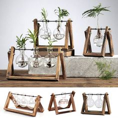 Rustic Plant Terrarium with Wooden Stand Welcome invigorating greenery in your home - it's stress-relieving and calming effect keeps you full of freshness and vitality. Place them in this rustic plant terrarium with an adorable wooden stand that serves as