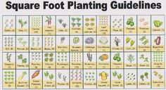 free printable garden planner sheets | To get a copy of this guide to vegetables and how many to plant in ...