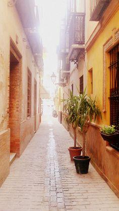 Narrow streets of Quarter Santa Cruz in Seville, Spain Seville Spain, Street, City, Places, Santa Cruz, Mariana, Viajes, Sevilla Spain, Cities