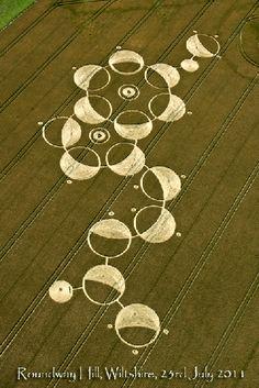 """""""Melatonin"""" crop circle UK"""