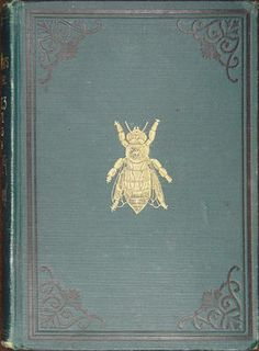 old book cover from the American Bee Journal 1861 - 1884