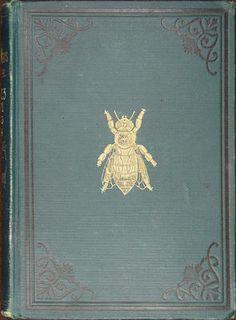 More Rare Beekeeping Works Now Online | Albert R. Mann Library