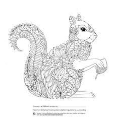 DIY - 18 Darmowych ilustracji do kolorowania.