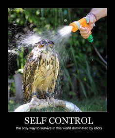 Self Control