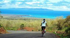 Precioso!! Galápagos en bicicleta