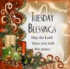Christmas Bible Verses, Christmas Card Sayings, Christmas Prayer, Merry Christmas Quotes, Christmas Blessings, Christmas Messages, Christmas Wishes, Christmas Greetings, Christmas Time