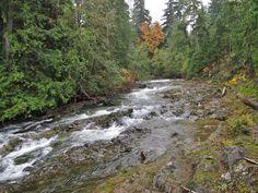 https://flic.kr/p/UHecG4 | Little Qualicum Falls Provincial Park | Little Qualicum Falls Provincial Park contains a series of waterfalls and trails along the Little Qualicum River on Vancouver Island in British Columbia. #ExploreCanada #exploreBC #exploreVancouverIsland #myPQB