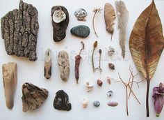 nature gathering from found objects