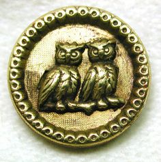 Antique Picture Button depicting Two Owls on Branch So Cute | eBay