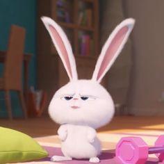 Cute Disney Wallpaper, Wallpaper Iphone Cute, Cute Cartoon Wallpapers, Rabbit Wallpaper, Bear Wallpaper, Snowball Rabbit, Cute Bunny Cartoon, Cute Cat Memes, Cute Minions