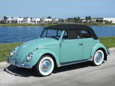 1962 Volkswagen Beetle - my first car was a 1964 Candied Apple Red VW ragtop. My favorite car, hands down! Ferdinand Porsche, Motorcycle Camping, Camping Gear, Volkswagen Bus, Vw Camper, Cabrio Vw, Beetles Volkswagen, Combi Wv, Kdf Wagen