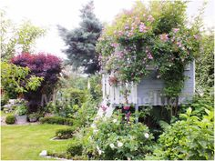 Mein Gartenglück