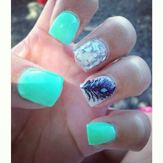 Teal and feather