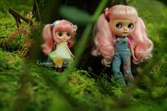 middie though mini, i will find you! by launshae, via Flickr