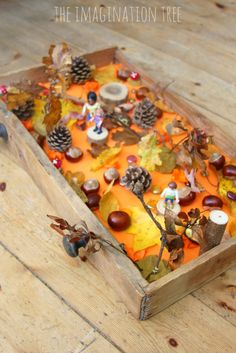 Autumn Woods Sensory Small World - The Imagination Tree Create an Autumn woods sensory small world play in a drawer for hours of fall themed imaginative play and lea Autumn Eyfs Activities, Nursery Activities, Imagination Tree, Small World Play, Fall Preschool, Nature Table, Autumn Nature, Creative Play, Sensory Play