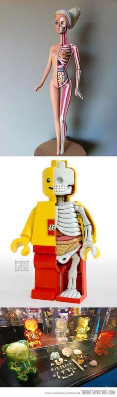 Anatomy of Barbie, Lego and Gummy Bears…