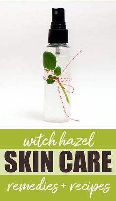Ten Natural Holistic Witch Hazel Home Remedies and Skin Care Recipes! Pull your witch hazel out of the medicine cabinet for these natural holistic skin care remedies and recipes! Witch hazel extract has been used for centuries as a home remedy to soothe e Witch Hazel Uses, Witch Hazel For Skin, Witch Hazel Toner, Homemade Skin Care, Diy Skin Care, Skin Care Tips, Skin Tips, Homemade Beauty, Organic Skin Care