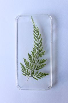 pressed fern leaf iPhone case