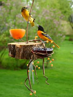 Handcrafted Bird Feeders by CoppervineFeeders Oriole Bird Feeders, Humming Bird Feeders, Bird House Feeder, Diy Bird Feeder, Birds And The Bees, How To Attract Birds, Backyard Birds, Yard Art, Bird Feathers