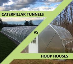 Caterpillar Tunnels and Hoop Houses are great growing structures that have several similarities and differences. This blog post covers those similarities, pros and cons, and how to select which structure is correct for you Tunnel Greenhouse, Build A Greenhouse, Greenhouse Growing, House Vents, Flower Farm, Kit Homes, Aquaponics, Raised Beds, Caterpillar
