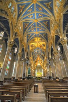 view inside the Basilica of the Sacred Heart at the University of Notre Dame - Even more beautiful in person! - GO IRISH! Sacred Architecture, Beautiful Architecture, Go Irish, Irish Fans, Notre Dame Campus, Notre Dame Irish, Notre Dame Football, Cathedral Church, Church Building