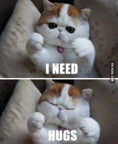 bear hugs. bare necessities. needs.