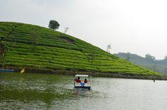 Boating through tea plantations: Vagamon, Kerala, India