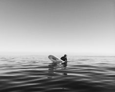 See related links to what you are looking for. Walden Surfboards, Penguins, Skiing, Vsco, Adventure, World, Gallery, Animals, Black