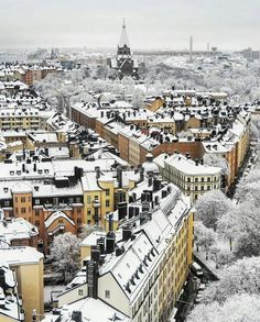Insight's travelling tips for Sweden's attractions, including Stockholm plus the Cold, Sweden happens to be the perfect spot for anyone who really likes the truly amazing outside . Visit Stockholm, Stockholm City, Kingdom Of Sweden, Mall Of America, North America, Visit Sweden, Snow Covered Trees, Sweden Travel, Royal Caribbean Cruise