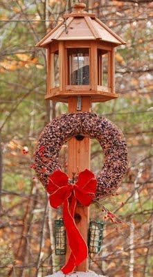 Wreath for the Birds. Repinned by www.mygrowingtraditions.com