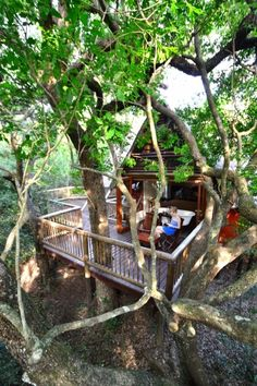 Deluxe chalet at Hluhluwe River Lodge & Adventures, Isimangaliso Wetland Park, South Africa