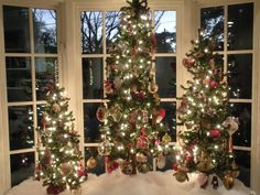 trees in a bay window | Christmas Trees | Pinterest