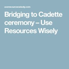 Bridging to Cadette ceremony – Use Resources Wisely