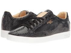 ec42b3e08ad No results for Puma match animal. Women s ShoesWoman Shoes