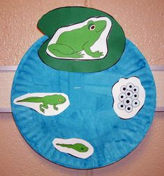 Frog & Toad crafts @ The Virtual Vine The difference between a frog and a toad                                                                                                                                                                                 More