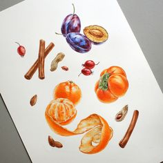 Watercolor fruits & berries on Behance Watercolor Fruit, Fruit Water, Botanical Illustration, Fruits And Vegetables, Berries, Drawings, Coloring, Behance, Tasty