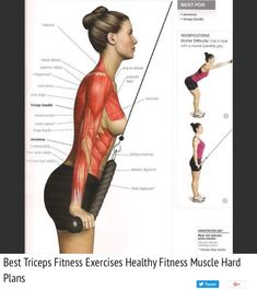 Healthy Food Tips: Top 5 Best Muscle Building Foods for Fitness Enthusiasts Big Muscle Training, Weight Training, Cable Workout, Fitness Motivation, Back Exercises, Stomach Exercises, Muscular, Fat Burning Workout, Loose Weight