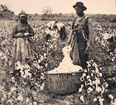 En los estados unidos, la esclavitud fue muy popular para un tiempo largo, especialmente en el sudeste (south).