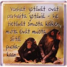 Vanhat ystävät... mietemagneetti 1,95€ Happy Friendship Day, My Life, Wisdom, Words, Quotes, Finland, Happy Friendship Day Date, Qoutes, Quotations