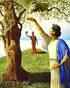 Conspiracy Feeds: Ο Μύθος της πρώτης Ιερής Ελιάς που φύτεψε η θεά Αθ...