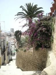 balkongestaltung - Google-Suche Paradise, Google, Plants, Balcony, Searching, Plant, Planets, Heaven