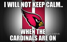 Arizona Cardinals football fans. NFL football. Let's Go Cards! #BirdGang #AZLadyBirds