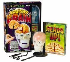 The Amazing Squishy Brain. Kids will use their brain to build The Amazing Squishy Brain. This 24-pieces model features a moving jaw and squishy brain parts. This set includes 8 squishy brain parts, 2 eyeballs,9-piece anatomically correct transparent skull model with base, 4 vertebrae pieces with spinal cord, plastic forceps, plastic scalpel, plastic tweezers, base and 24-page full color factual human brain book. $29.95