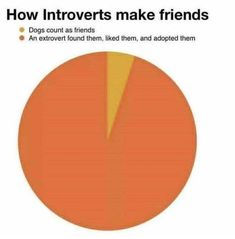 Introvert Memes and Real Life Jokes in English Stupid Funny Memes, Funny Relatable Memes, Funny Posts, The Funny, Funny Quotes, Hilarious, Funny Sunday Memes, Sarcastic Jokes, Really Funny