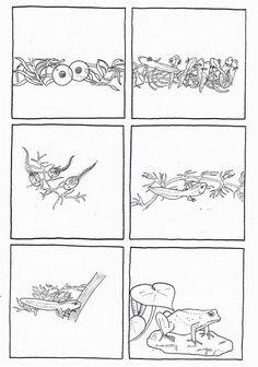 logische volgorde / du_t_tard___la_grenouille: